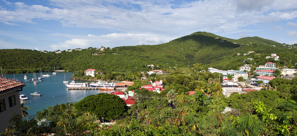 Cruz Bay St. John from Battery Hill Condos